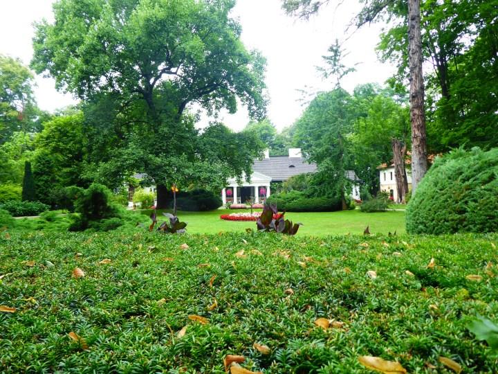 Socinus Grave Estate 01