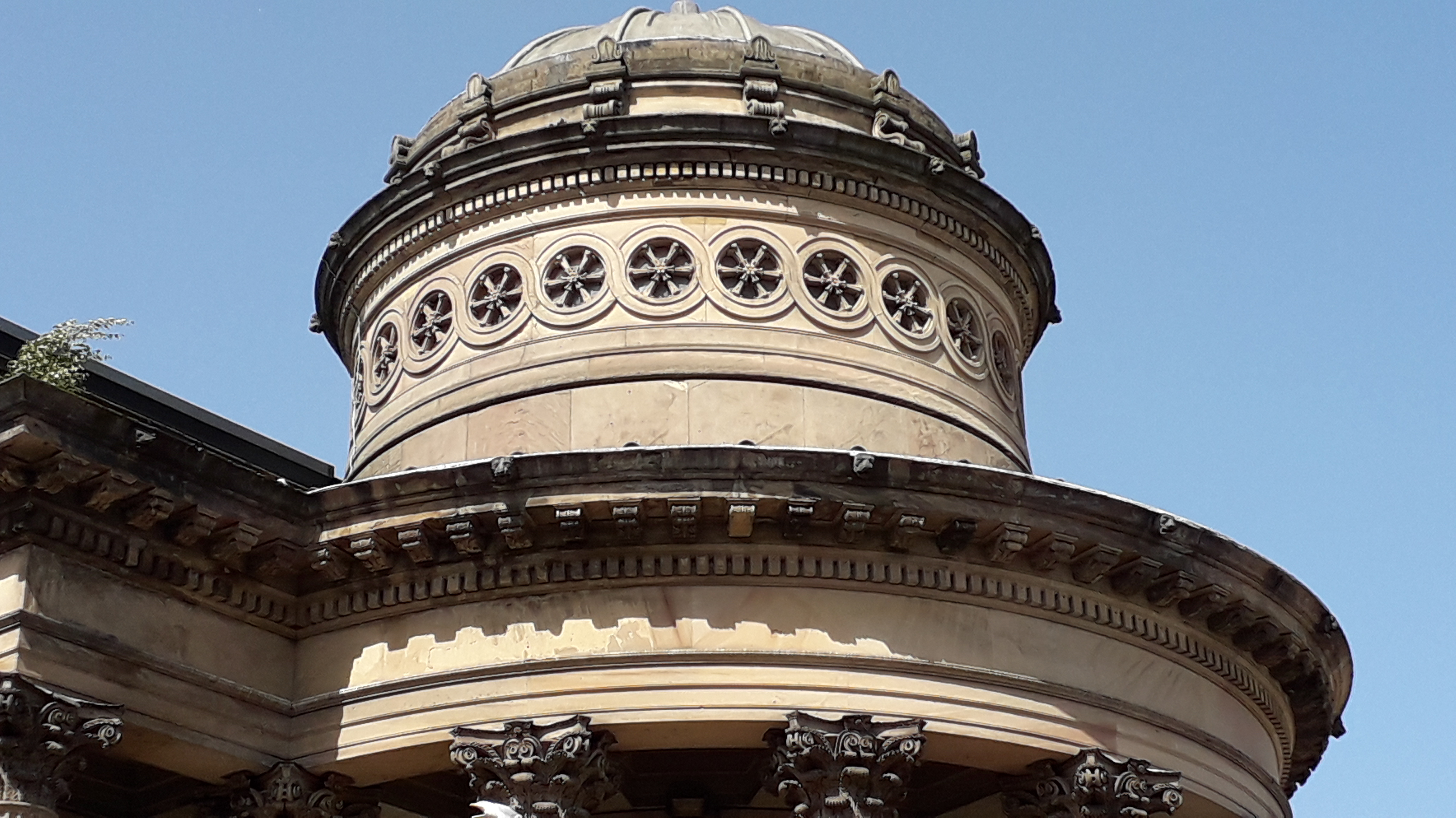 GGC dome detail
