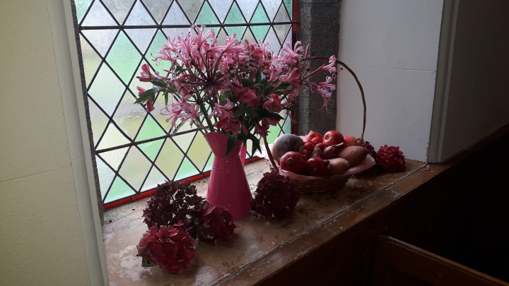Ballee Harvest 2019 window pink