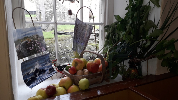 Harvest service Dpk 2019 Window 04