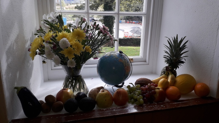 Harvest service Dpk 2019 Window 06